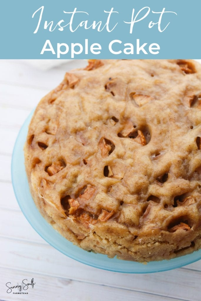 Instant Pot Apple Cake