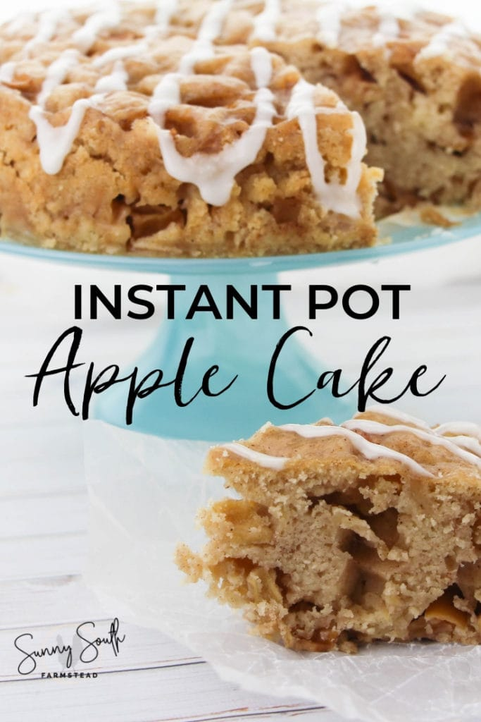 Instant Pot Apple Cake - Living Bite Sized